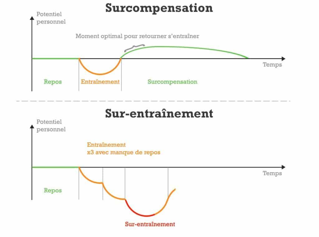 Les repos exact à prendre entre tes entraînements : schéma de la surcompensation et du surentraînement